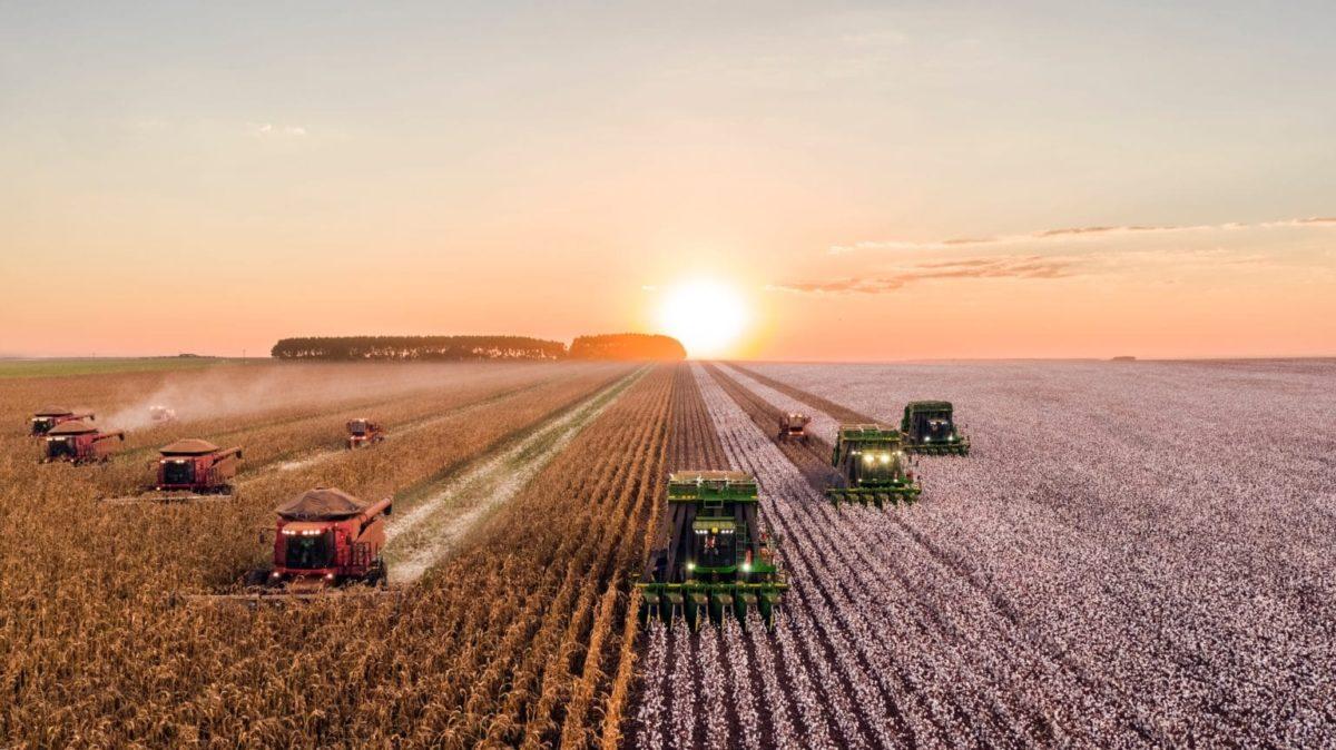 logiciel-business-plan-agriculture